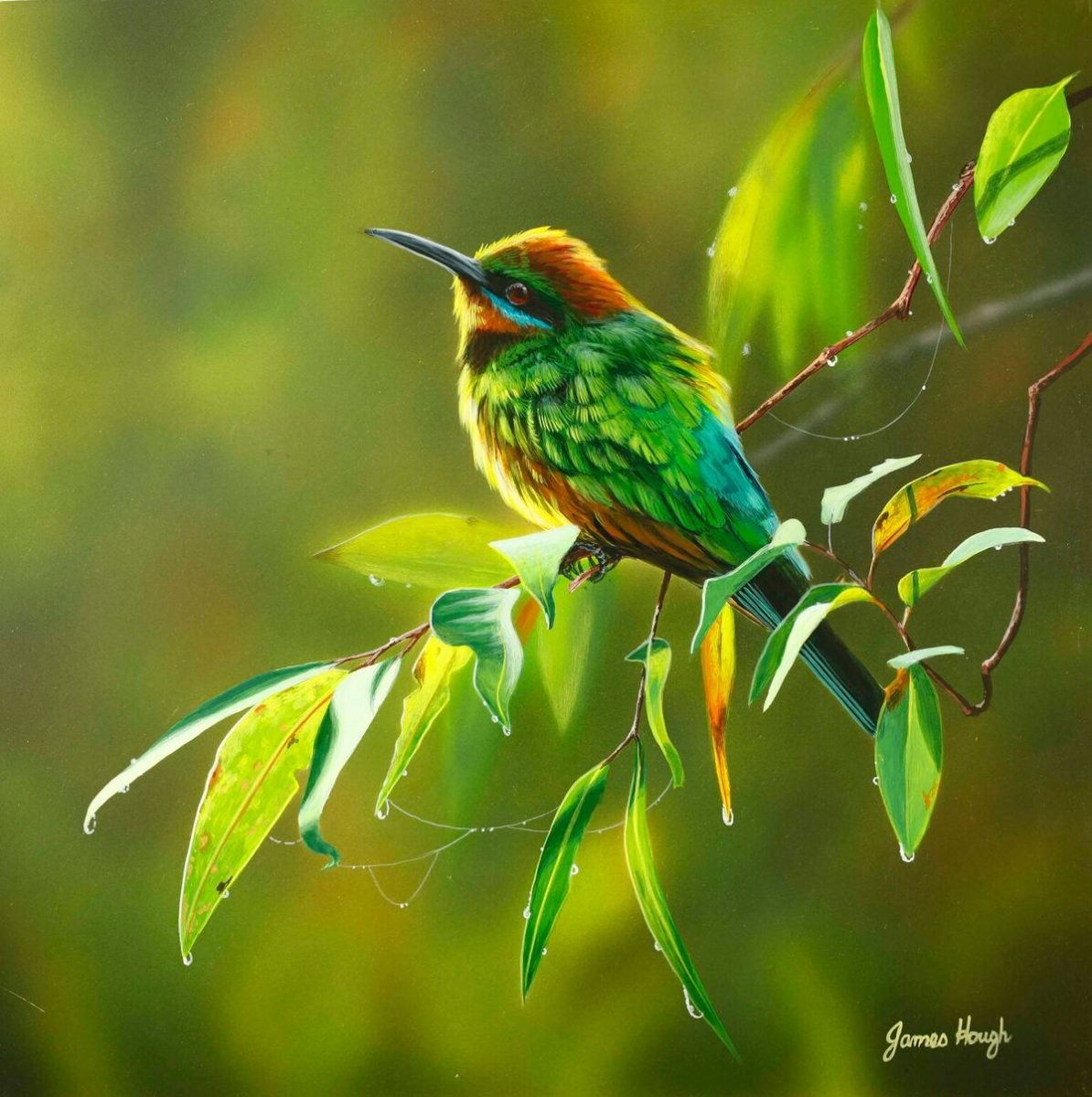 Bee Eater painting by James Hough