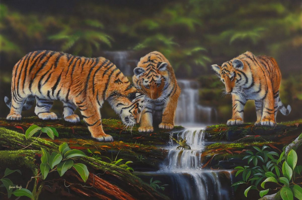 Bengal Tigers Painting James Hough