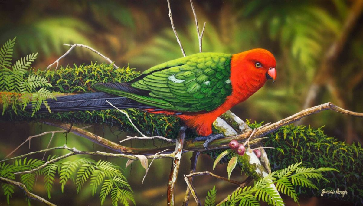 Fallen Fruit parrot painting by James Hough