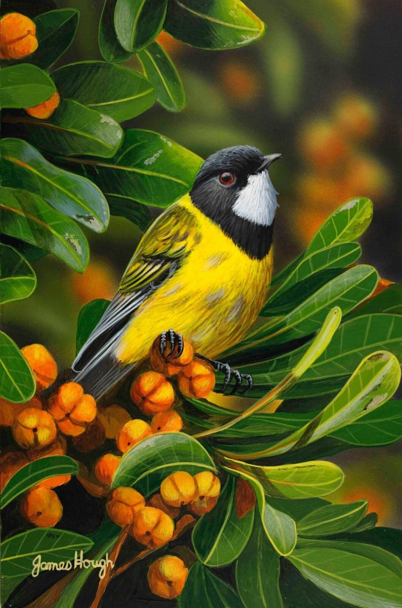 Golden Day bird painting by James Hough