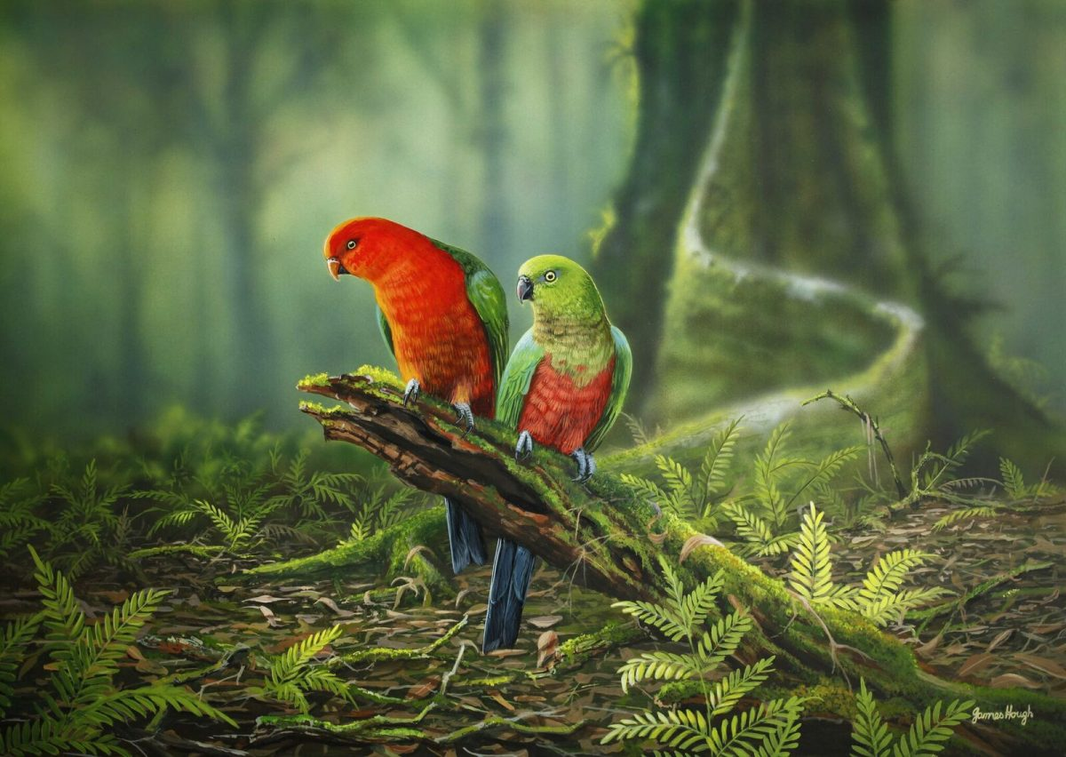 Our rainforest cathedral parrots painting by James Hough