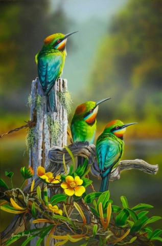 Rainbow Bee Eaters painting by James Hough