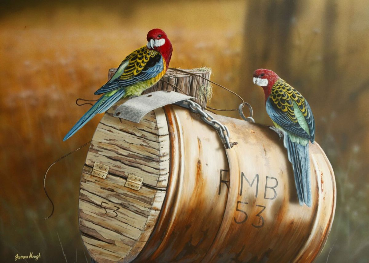 Roadside mail Rosella painting by James Hough
