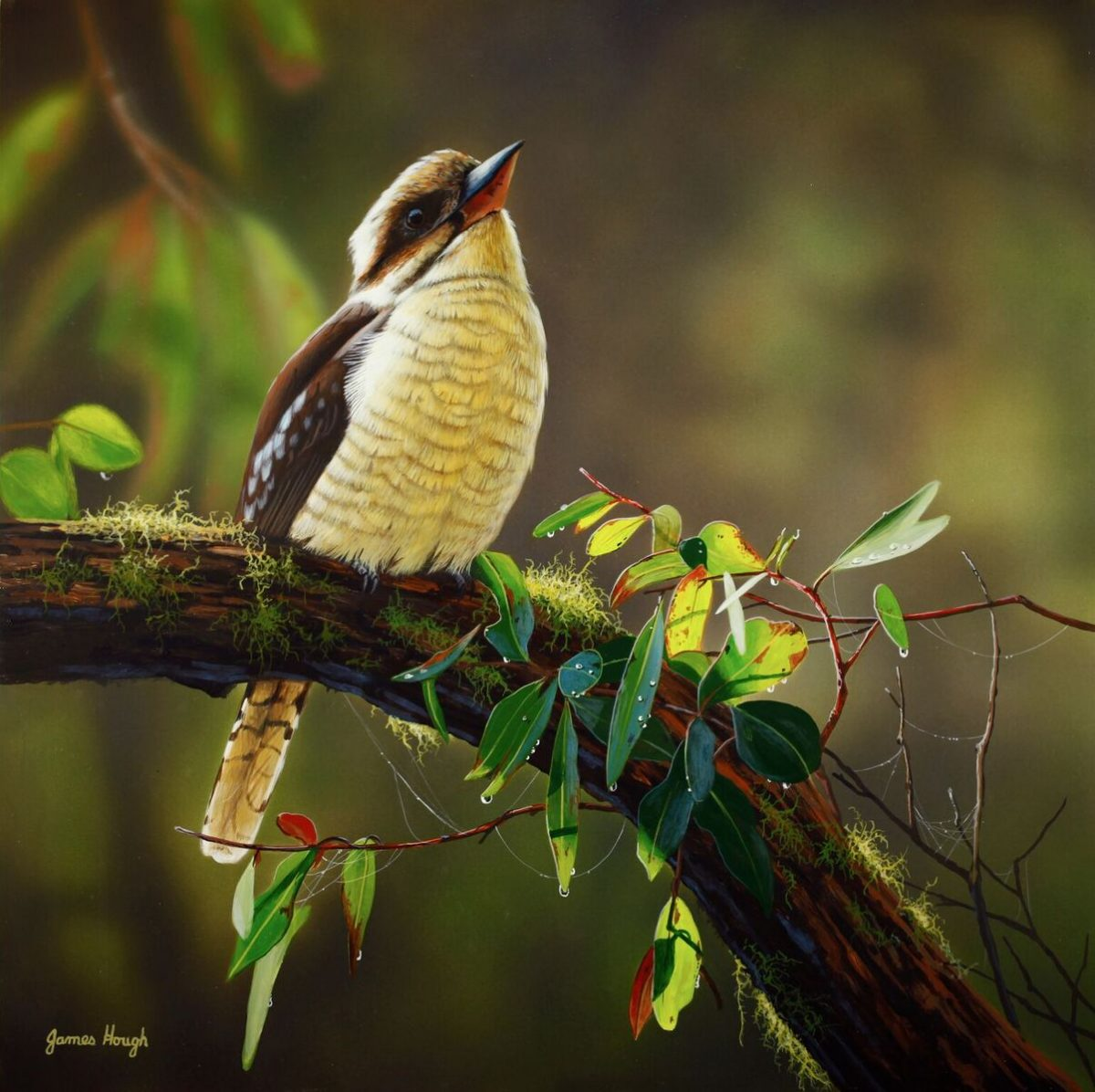 Times Like This Kookaburra painting by James Hough