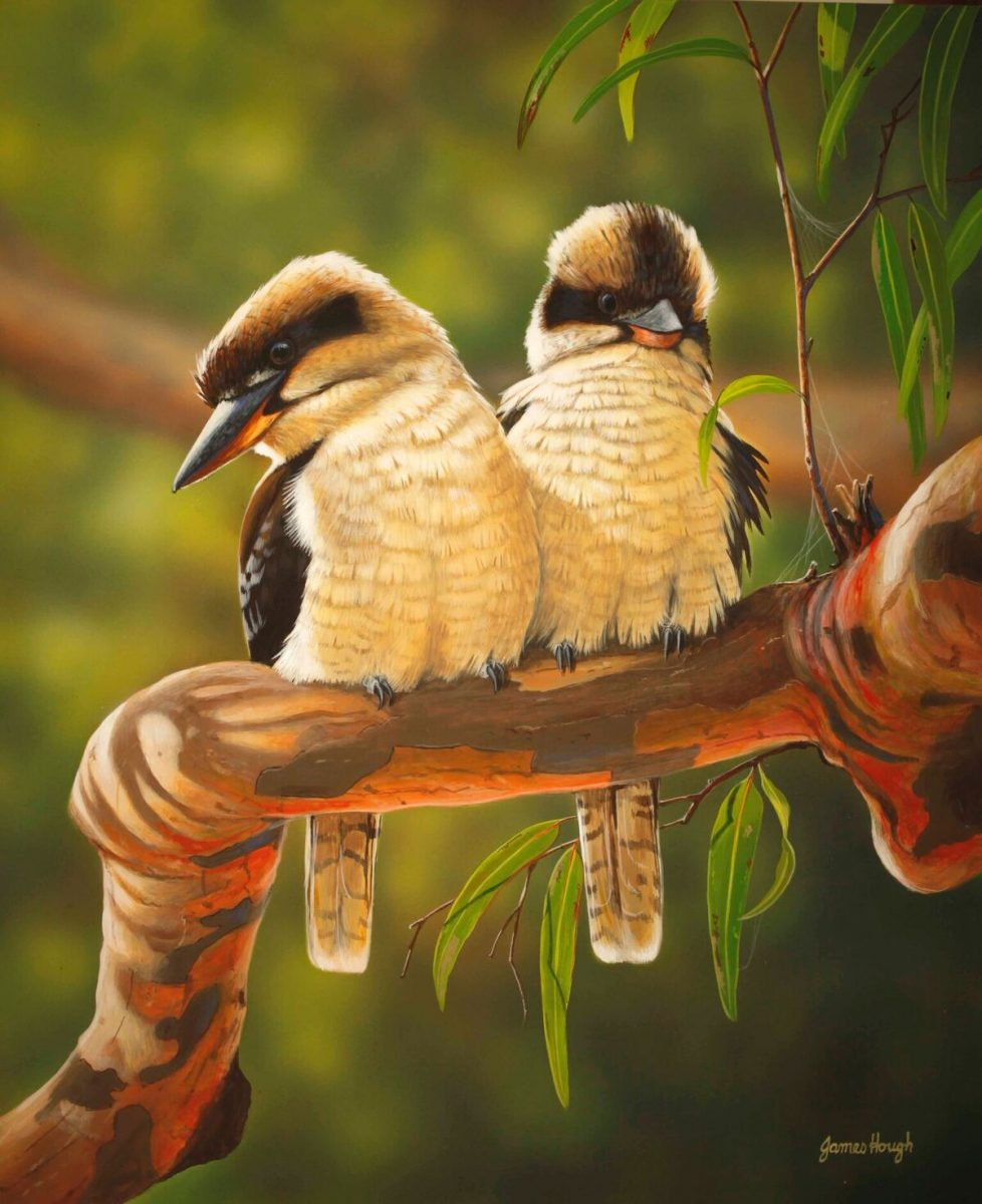 Two Seater Kookaburras painting by James Hough