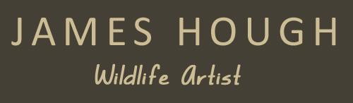 James Hough Wildlife paintings Logo