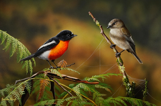 """First Greetings"" Flame Robins Painting by James Hough"