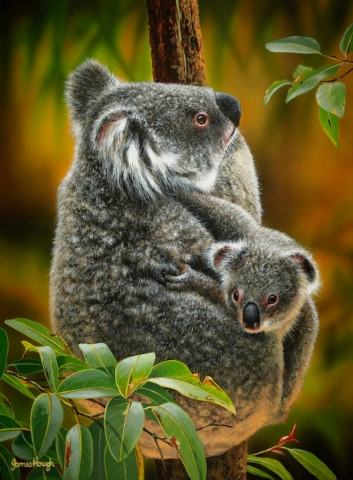 """Koala Cute"" - Koala and Cub Painting James Hough"